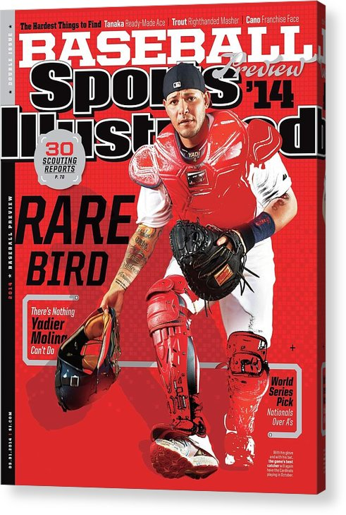 St. Louis Cardinals Acrylic Print featuring the photograph Rare Bird 2014 Mlb Baseball Preview Issue Sports Illustrated Cover by Sports Illustrated