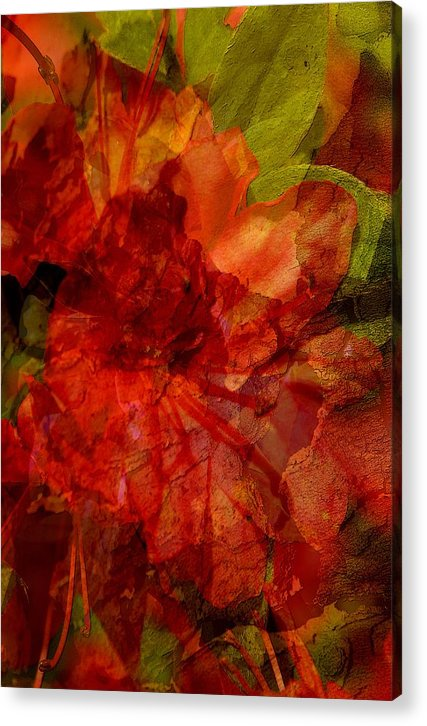 Abstract Acrylic Print featuring the digital art Blood Rose by Tom Romeo