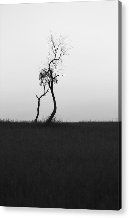 Two Trees Acrylic Print featuring the photograph Untitled by Gregory Alan