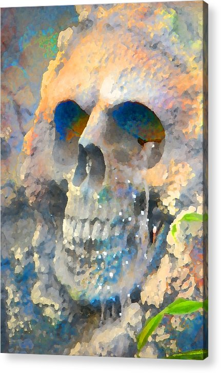 Halloween Acrylic Print featuring the photograph Skull by Danielle Stephenson