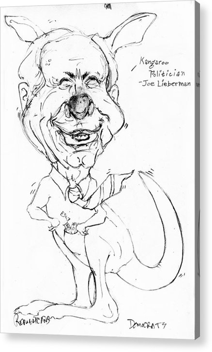 Political Cartoon Joe Lieberman Caricature Satire Acrylic Print featuring the drawing Kangaroo Politician Joe Lieberman by Cartoon Hempman