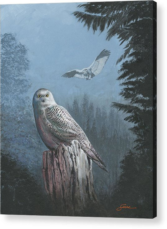 #harold Shull Acrylic Print featuring the painting Snowy Owl by Harold Shull