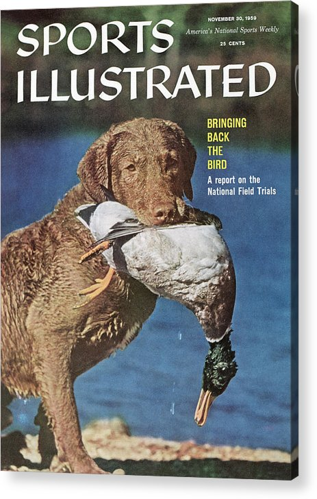 Magazine Cover Acrylic Print featuring the photograph Duck Hunting Sports Illustrated Cover by Sports Illustrated