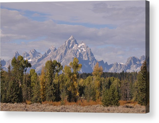 Mountain Acrylic Print featuring the photograph Grand Teton by Frank Madia