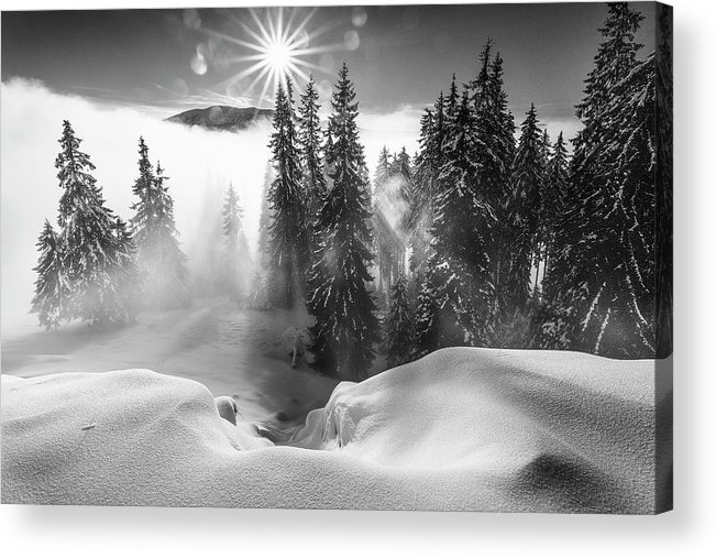 Winter Acrylic Print featuring the photograph A Winter Tale ! by Sorin Onisor