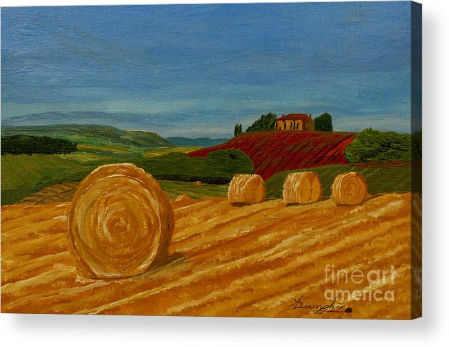 Hay Acrylic Print featuring the painting Field Of Golden Hay by Anthony Dunphy