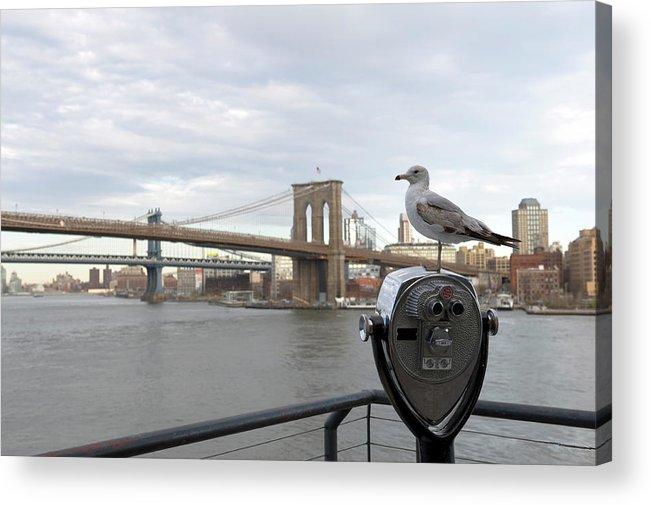 Lower Manhattan Acrylic Print featuring the photograph Brooklyn Bridge by Kevinjeon00