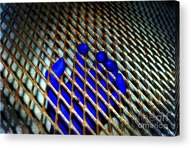 Grasp Acrylic Print featuring the photograph Caged by The Stone Age
