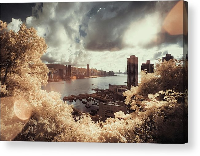 Treetop Acrylic Print featuring the photograph Cityscape In Dream by D3sign