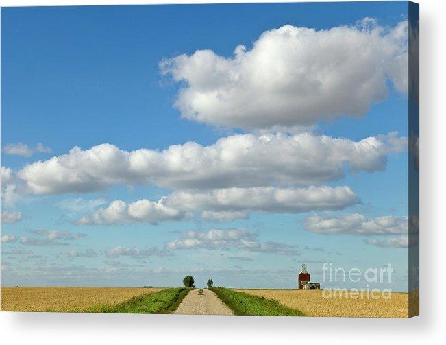 00559193 Acrylic Print featuring the photograph Dirt Road And Grain Elevator Williston by Yva Momatiuk John Eastcott