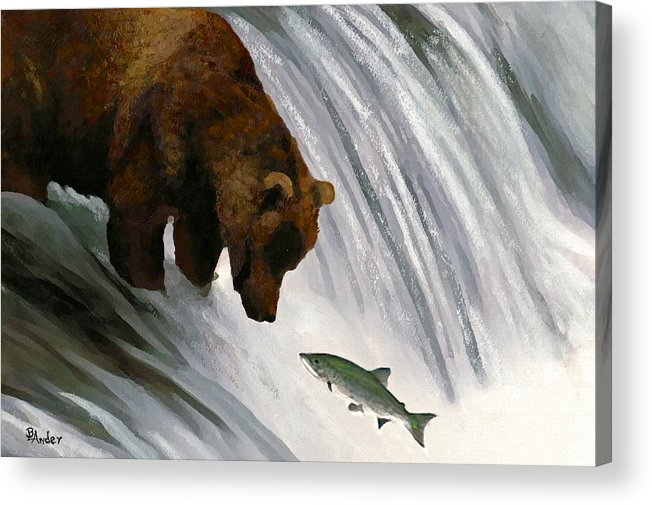 Grizzly Bear Acrylic Print featuring the drawing Fast Food Delivery by Brent Ander