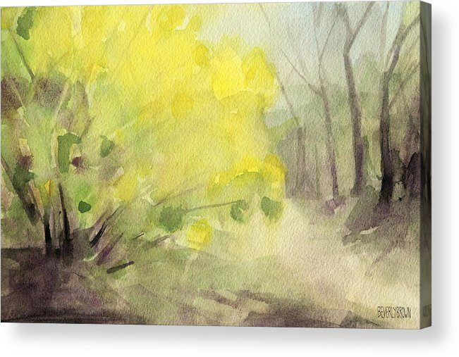 Landscape Acrylic Print featuring the painting Forsythia In Central Park Watercolor Landscape Painting by Beverly Brown Prints