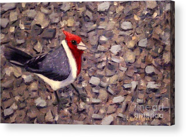 Bird Acrylic Print featuring the painting Home Turf by Laurie Morgan