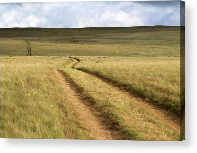 Scenics Acrylic Print featuring the photograph Meandering Path Through The Hills Of by Morgan Trimble