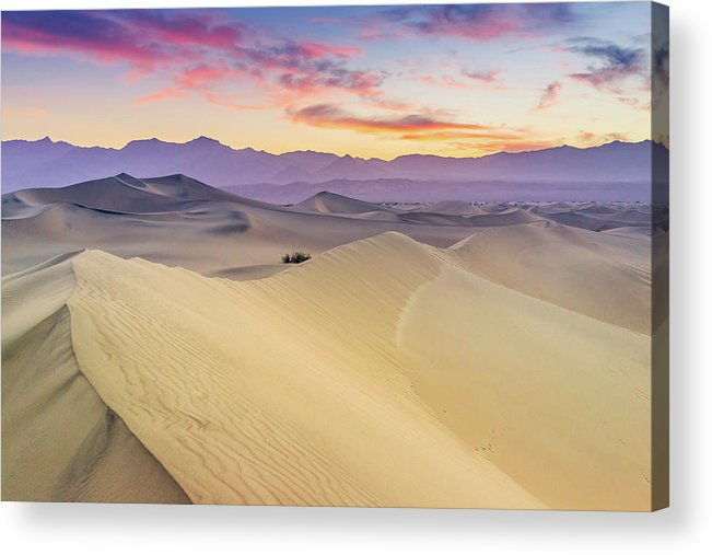 Tranquility Acrylic Print featuring the photograph Mesquite Flat Sand Dunes by Zx1106