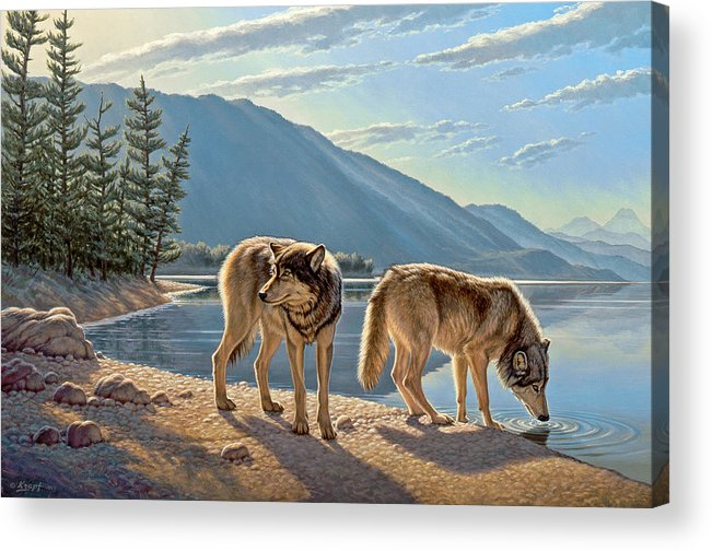 Wildlife Acrylic Print featuring the painting Pause on the Way by Paul Krapf