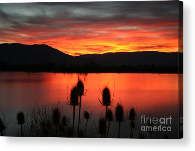 Pineview Acrylic Print featuring the photograph Pineview Dawn by Bill Singleton