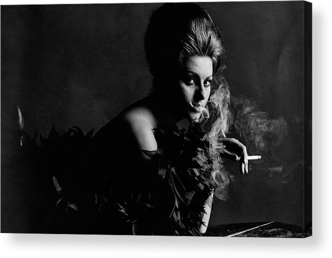 Actress Acrylic Print featuring the photograph Portrait Of Sophia Loren by Bert Stern