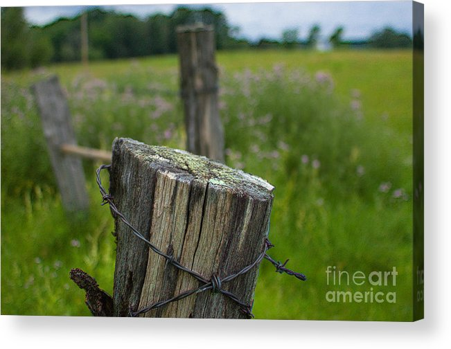 Acrylic Print featuring the photograph Post Script by The Stone Age