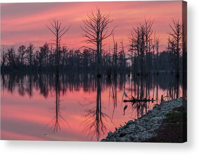 Outdoors Acrylic Print featuring the photograph Standing Guard by Larrybraunphotography.com