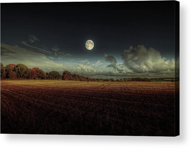 Tranquility Acrylic Print featuring the photograph The Moon by A Goncalves