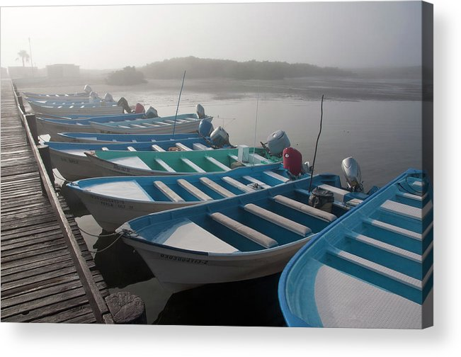 Tourboat Acrylic Print featuring the photograph Whale Watching Tour Boats Docked At by Mark Newman