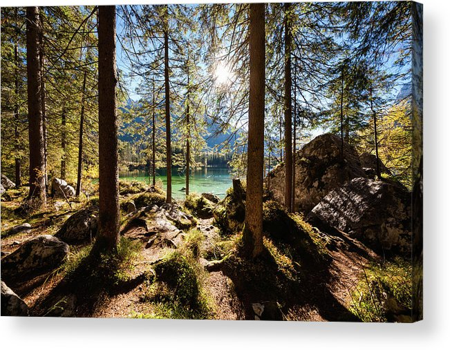 Tranquility Acrylic Print featuring the photograph Zauberwald In Autumn by Jorg Greuel