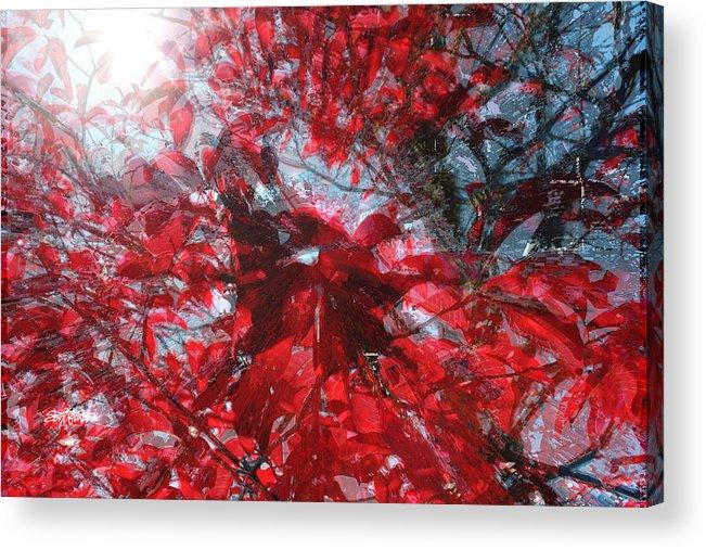 Black And Red Crescendo Acrylic Print featuring the photograph Black and Red Crescendo by Seth Weaver