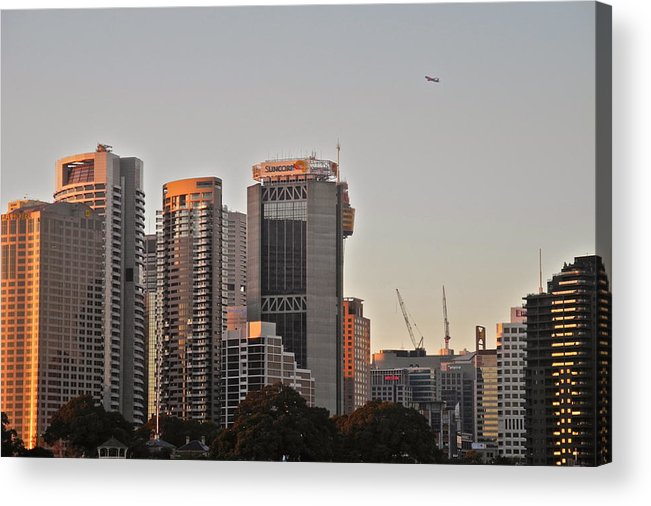 Sydney Acrylic Print featuring the photograph Early Morning Sun In Sydney by Kirsten Giving