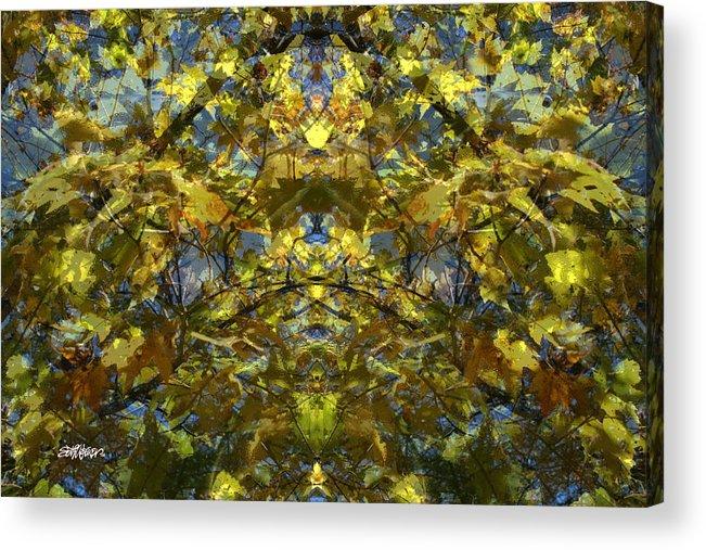 Golden Rorschach Acrylic Print featuring the photograph Golden Rorschach by Seth Weaver