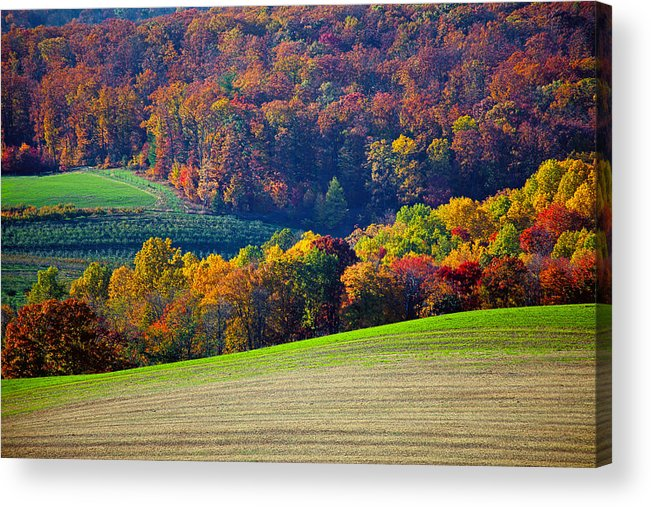Landscape Acrylic Print featuring the photograph Hills by Mitch Cat