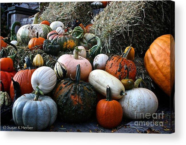 Outdoors Acrylic Print featuring the photograph Pumpkin Piles by Susan Herber