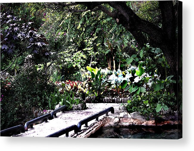 Sunken Acrylic Print featuring the painting Sunken Gardens Collection II by Diana Gonzalez