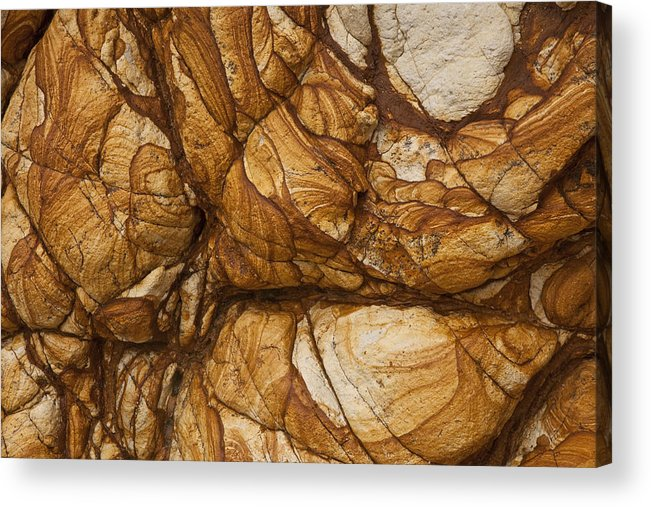 Hhh Acrylic Print featuring the photograph Volcanic Rock, Onawe, Banks Peninsula by Colin Monteath