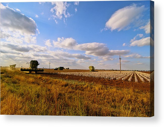 Farming Acrylic Print featuring the photograph West Texas Cotton Harvest by Robert Hudnall