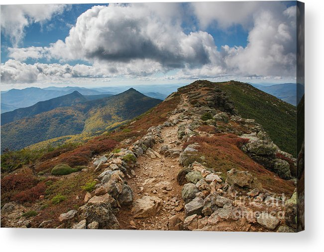Alpine Tundra System Acrylic Print featuring the photograph Franconia Ridge Trail - White Mountains New Hampshire by Erin Paul Donovan