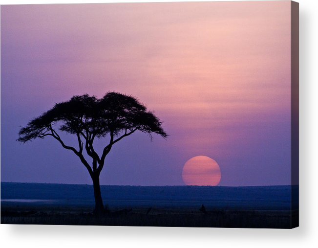 Africa Acrylic Print featuring the photograph African Sunrise by Michele Burgess