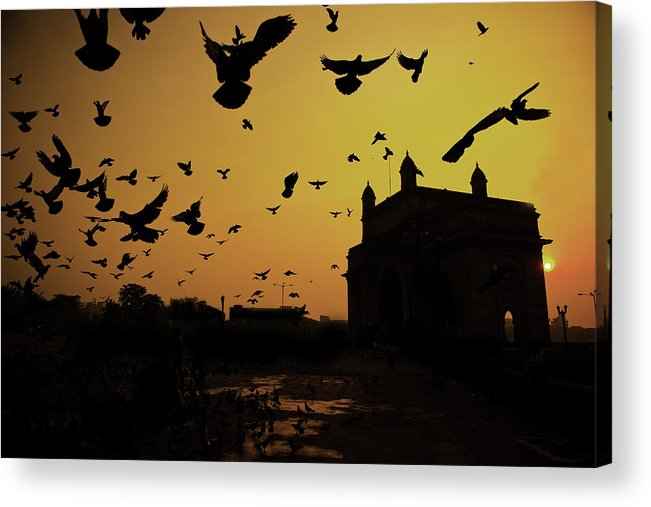 Horizontal Acrylic Print featuring the photograph Birds In Flight At Gateway Of India by Photograph by Jayati Saha