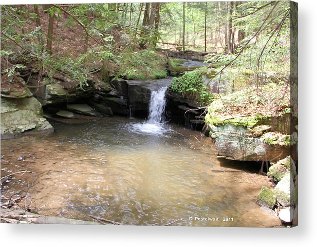 Streams Acrylic Print featuring the photograph Brook Trout Falls by Carolyn Postelwait