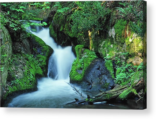 Silver Lead Creek Flows Softly Through A Michigan Hill Side Acrylic Print featuring the photograph Flowing Softly by Bill Morgenstern