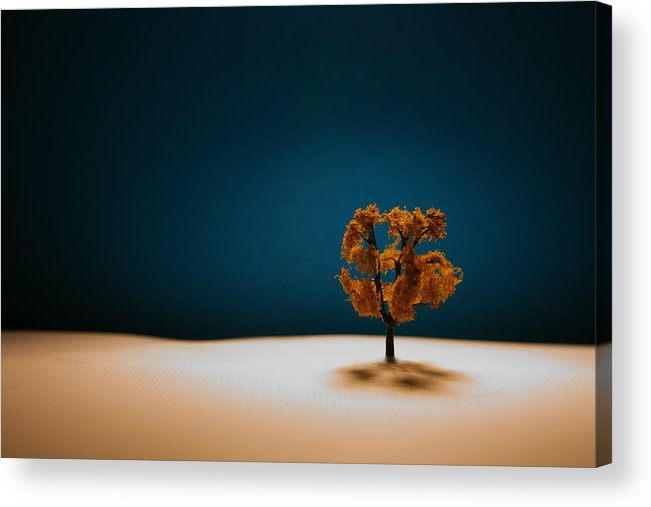 Tree Acrylic Print featuring the photograph It Is Always There by Mark Ross