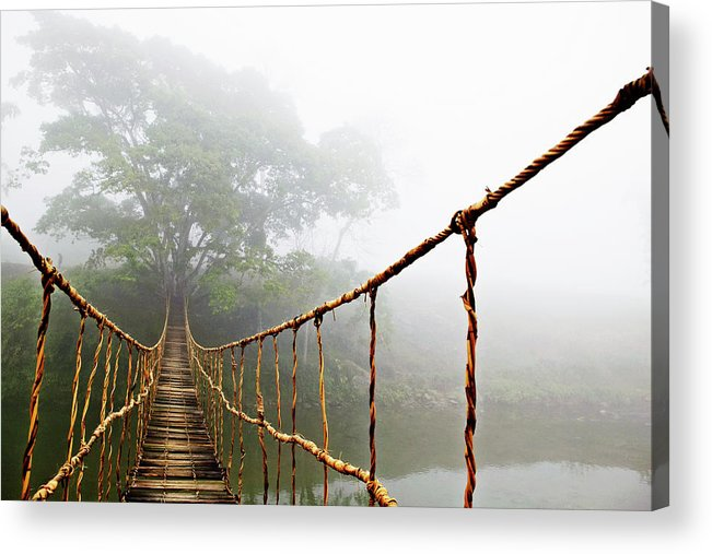 Rope Bridge Acrylic Print featuring the photograph Jungle Journey by Skip Nall