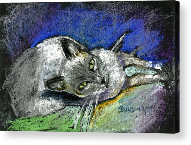 Cat Acrylic Print featuring the pastel Michael Campbell by Arline Wagner