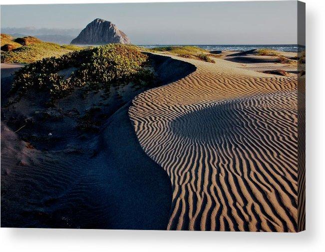 Nature Acrylic Print featuring the photograph Morro Strand State Beach, California by Zayne Diamond Photographic