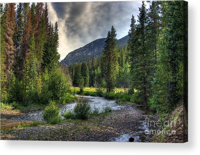 Landscape Acrylic Print featuring the photograph Mountain Stream 4 by Pete Hellmann