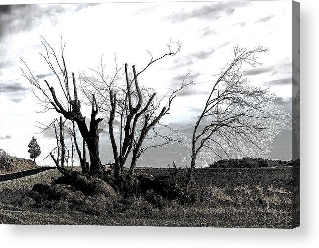 Photograph Acrylic Print featuring the photograph My Home Town-After The Storm by Robert Litewka