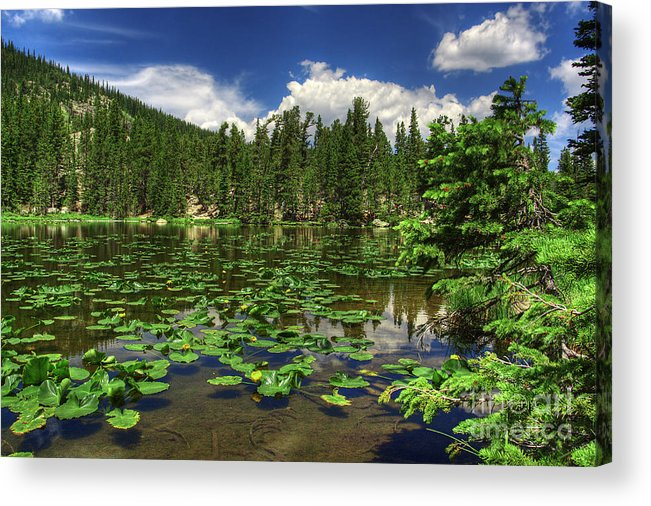 Landscape Acrylic Print featuring the photograph Nymph Lake by Pete Hellmann