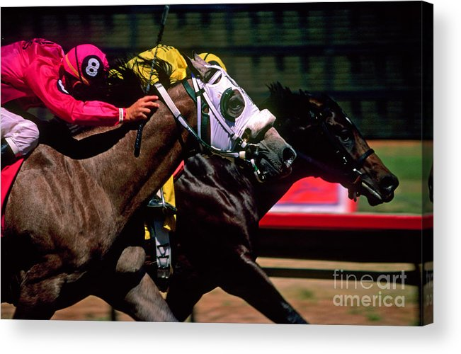 Horse Acrylic Print featuring the photograph Photo Finish by Kathy McClure