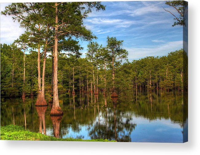 Quiet Acrylic Print featuring the photograph Quiet Afternoon At The Bayou by Ester McGuire