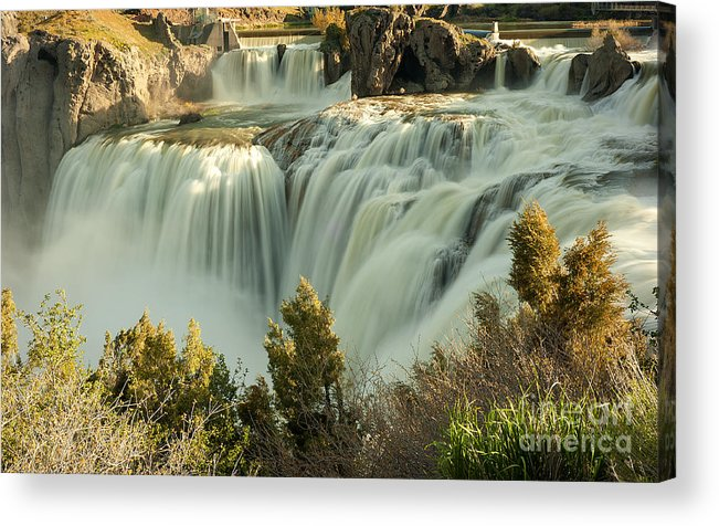Waterfall Acrylic Print featuring the photograph Runoff at Shoshone Falls by Dennis Hammer